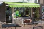 magasin de fleur