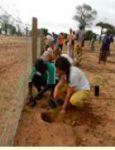 Association terre d'afrique